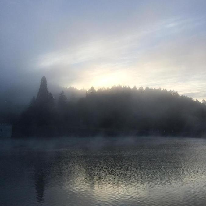 Mt. Tabor in Portland Oregon shrouded in mist