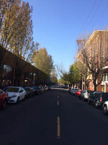 NW 23rd St, the Nob Hill neighborhood in Portland