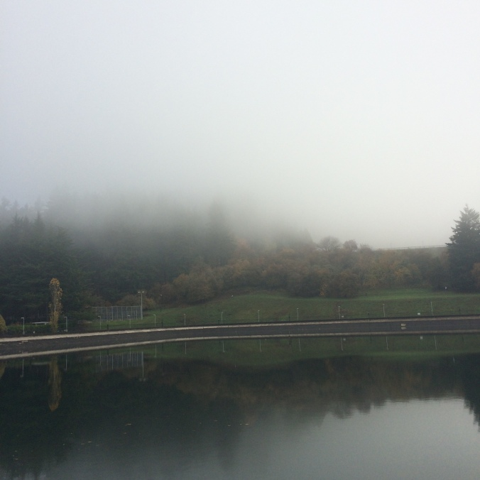 Fog on Mount Tabor, from one of the lower reservoirs in Portland Oregon