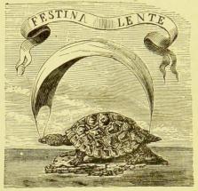 festina_lente turtle